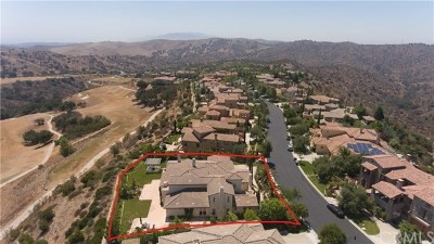 Chino Hills Single Family Home For Sale: 16683 Catena Drive