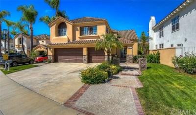 Tustin Single Family Home For Sale: 2220 Bowman Avenue