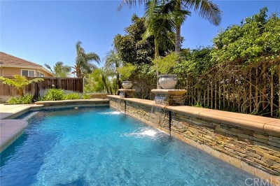 San Clemente Single Family Home For Sale: 2306 Via Zafiro