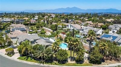 Laguna Hills Single Family Home For Sale: 27712 Pinestrap Circle