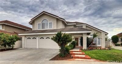 Laguna Niguel Single Family Home For Sale: 3 Precipice
