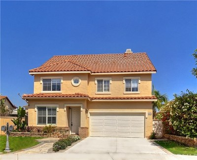 Irvine Single Family Home For Sale: 97 Millbrook