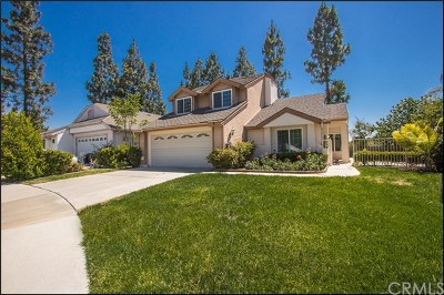 Aliso Viejo Single Family Home For Sale: 4 Briarglenn