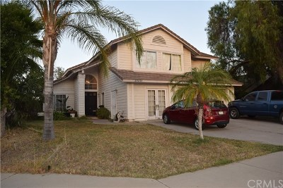 Lake Elsinore Single Family Home For Sale: 29070 Palm View Street