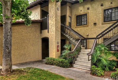 Laguna Hills Condo/Townhouse For Sale: 25621 Indian Hill Lane #E