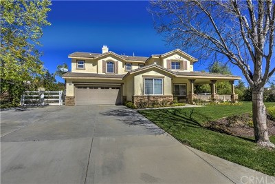 Castaic Single Family Home For Sale: 30019 Sagecrest Way