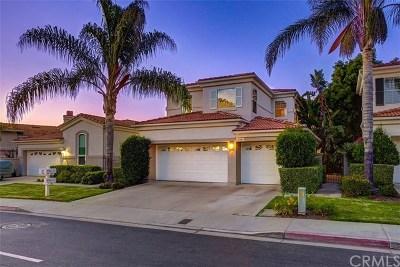 San Juan Capistrano Single Family Home For Sale: 27881 Via De Costa
