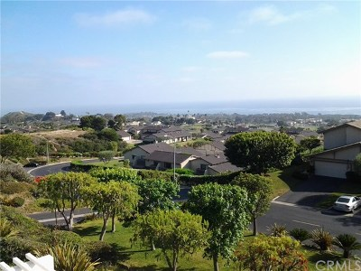 San Clemente Condo/Townhouse For Sale: 242 Calle Cuervo