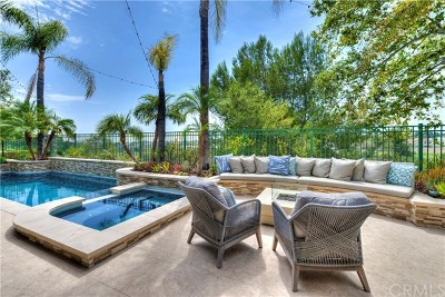 Rancho Santa Margarita Single Family Home For Sale: 45 Golf Ridge Drive