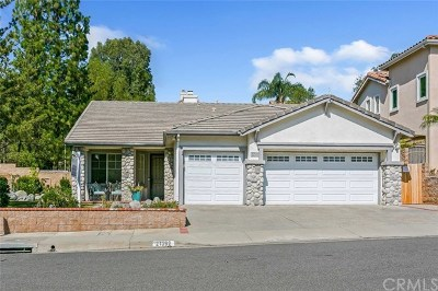 Single Family Home For Sale: 21392 Silvertree Lane