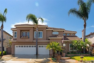 Laguna Niguel Single Family Home For Sale: 46 Pembroke Lane