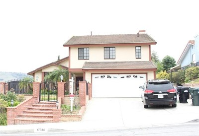 Rowland Heights Single Family Home For Sale: 17934 Calle Los Arboles