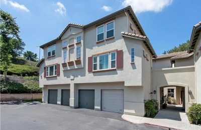 Trabuco Canyon Rental For Rent: 7 Mesquite