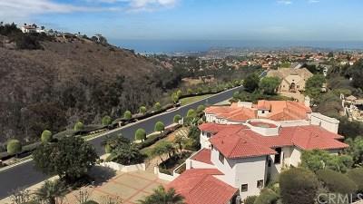 San Juan Capistrano Rental For Rent: 27451 Connemara Drive