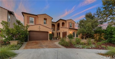 Irvine Single Family Home For Sale: 103 Fairgrove