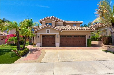 Rancho Santa Margarita Single Family Home For Sale: 19 Via Torre