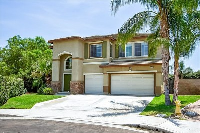 Eastvale Single Family Home For Sale: 6799 Cecille Circle