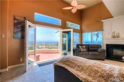 Dana Point Single Family Home For Sale: 33712 Holtz Hill Road