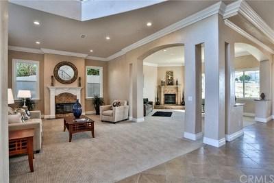 Orange County Single Family Home For Sale: 17 Calle Ameno