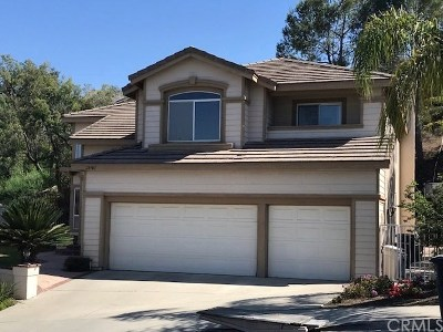 Trabuco Canyon Rental For Rent: 28701 Malabar Road