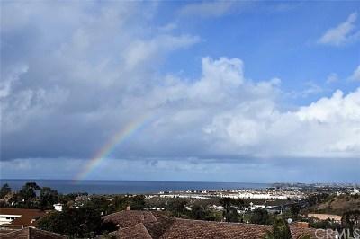 San Clemente Single Family Home For Sale: 305 Calle Delicada