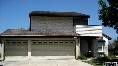 Single Family Home For Sale: 6421 E Shady Valley Lane