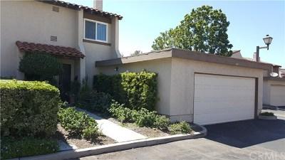 Anaheim Hills Single Family Home For Sale: 217 S Camino De Fresas