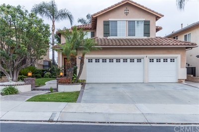 Mission Viejo Single Family Home Active Under Contract: 46 Feather Ridge
