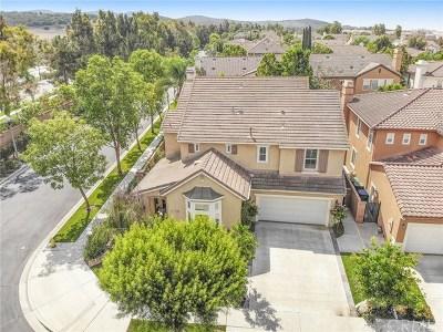Irvine Single Family Home For Sale: 16 Plumbago
