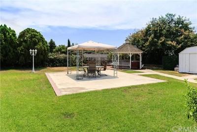 Diamond Bar Single Family Home For Sale: 1068 Overlook Ridge Road