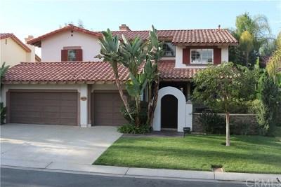 San Juan Capistrano Single Family Home For Sale: 28771 Calle Posada