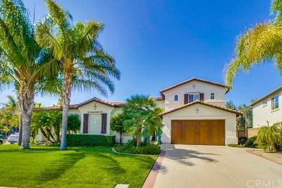Modjeska Canyon, Silverado Canyon Single Family Home For Sale: 18661 Topanga Canyon Road