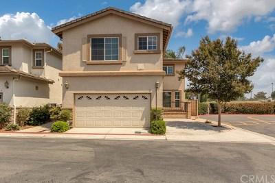 Irvine Single Family Home For Sale: 2 Orangetip