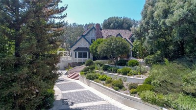 San Juan Capistrano Single Family Home For Sale: 29971 Saddleridge Drive