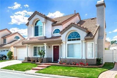 Aliso Viejo Single Family Home For Sale: 25 Santa Monica Street