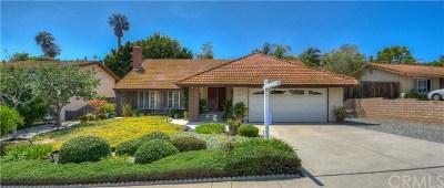 San Juan Capistrano Single Family Home For Sale: 33161 Via La Pluma