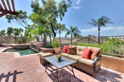 Lake Forest Single Family Home For Sale: 28591 Camelback Road