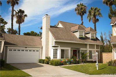 Mission Viejo Single Family Home For Sale: 21811 Tegley