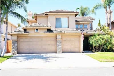 Mission Viejo Single Family Home For Sale: 26 Montgomery