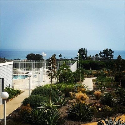 Dana Point Condo/Townhouse For Sale: 24562 Harbor View Drive #B