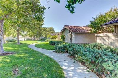 Irvine Single Family Home For Sale: 46 Orchard