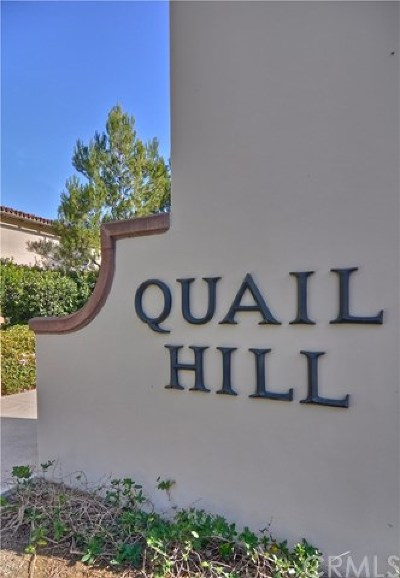Irvine Condo/Townhouse For Sale: 404 Quail Ridge