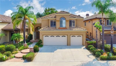 Laguna Hills Single Family Home For Sale: 25722 Wood Brook Road