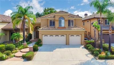 Laguna Hills Single Family Home For Sale: 25722 Wood Brook Road