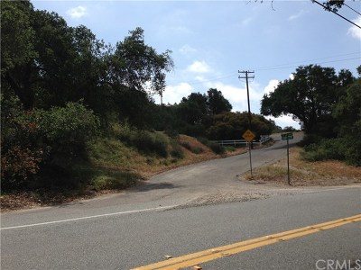 Trabuco Canyon Residential Lots & Land For Sale: 30295 Hunky Dory Lane