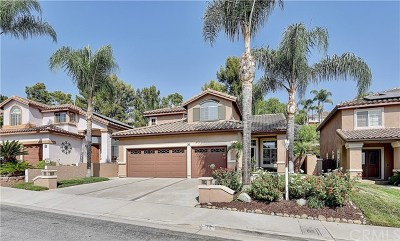 Rancho Santa Margarita Single Family Home For Sale: 30 Via Gatillo