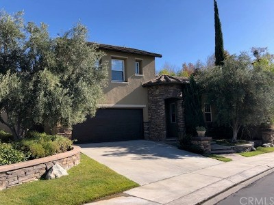 Orange County Single Family Home For Sale: 38 Lyra Way
