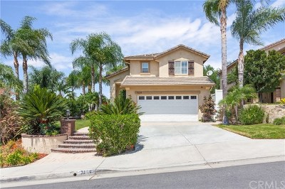 Anaheim Hills Single Family Home For Sale: 7639 E Big Canyon Drive