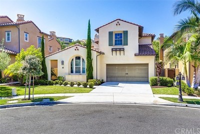 San Clemente Single Family Home For Sale: 45 Paseo Lerida
