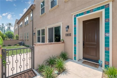 Lake Forest Condo/Townhouse For Sale: 209 El Paseo